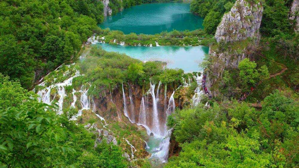 Флора и фауна Хорватии