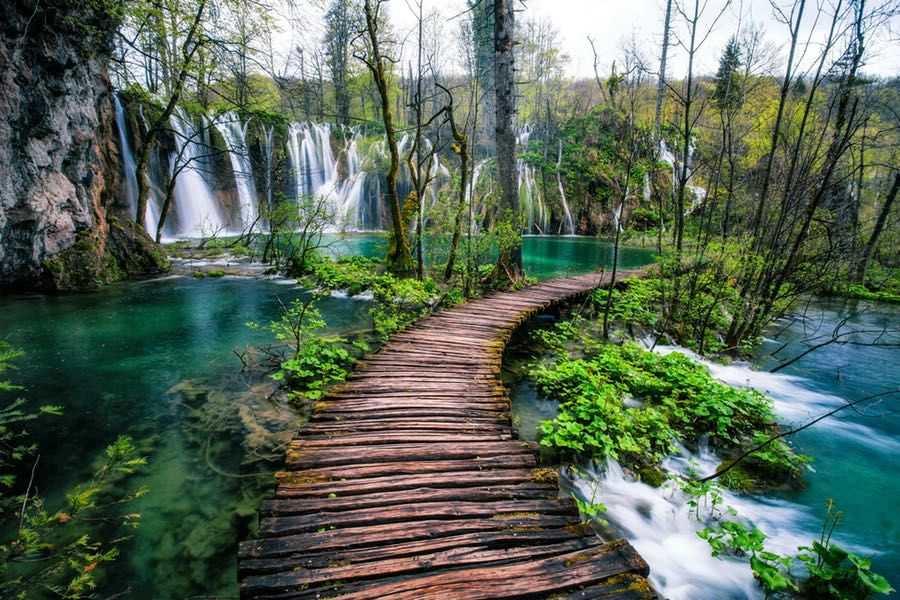 Лесной экскурсионный тур в Хорватию