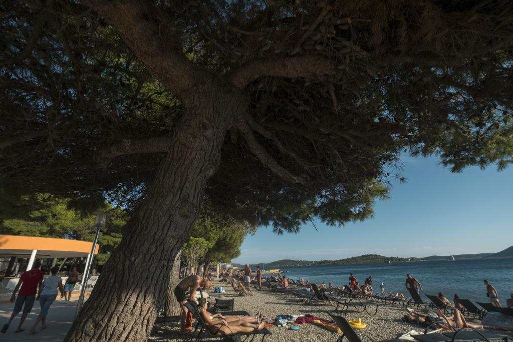 Пляж Олимпия в Водице